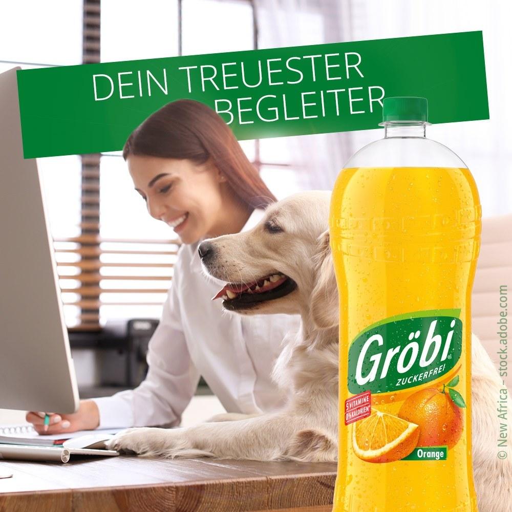 groebi_treuester_begleiter